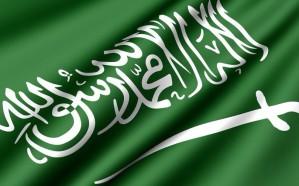 المملكة تعلن تأييدها الكامل لأي إجراءات تحد من تحركات إيران العدائية