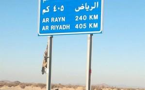 شاهد مافعله مجهولون بحيوان بري بطريق بيشة الرياض