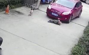 شاهد.. لحظة دهس سيارة لطفل صيني ورد فعل سريع من المارة
