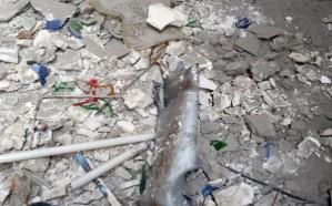 استشهاد شاب بمقذوف حوثي في العارضة