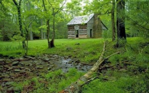 رجل يعيش 5 سنوات في الغابات هرباً من زوجته!