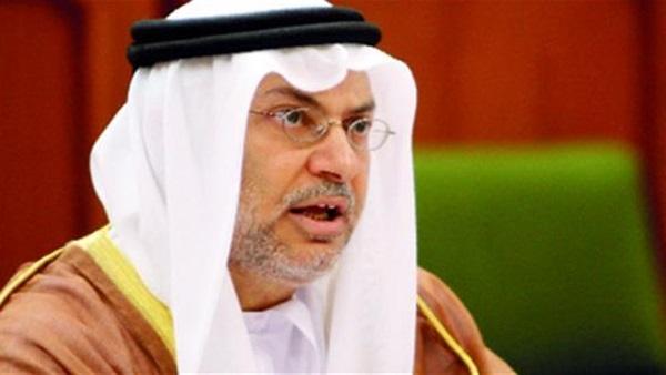 قرقاش: هناك حاجة إلى مراقبة دولية في قطر والضغوط على الدوحة نجحت