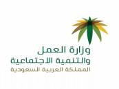 قصر العمل في 12 نشاطًا على السعوديين والسعوديات